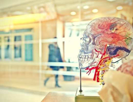 How does neuromarketing work in events? - Eventisimo Blog
